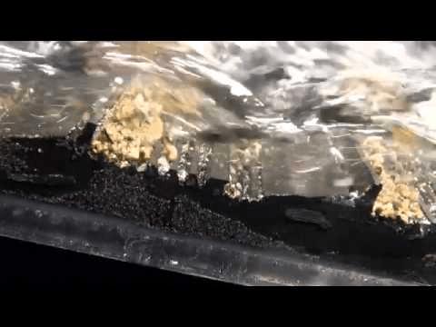 tapis d'orpaillage goldhog en action