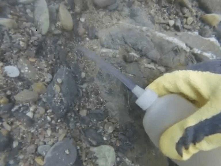 le sniping à la recherche d'or sous l'eau