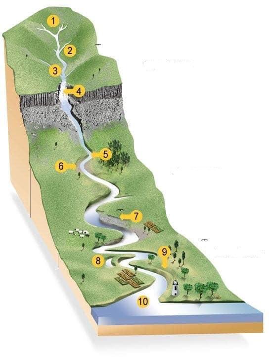 dessin du cycle de l'eau en rivière
