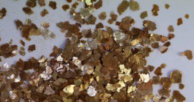 paillettes de mica a ne pas confondre avec l'or