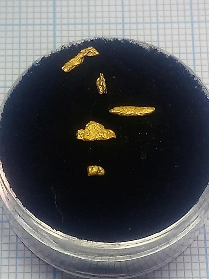 grains et pépites a observer à la binoculaire