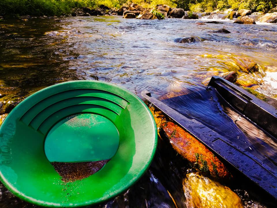 duo caledonian et pan au bord de la rivière