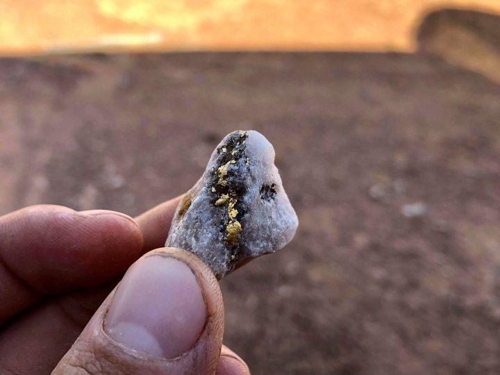 specimen australien trouvé au detecteur