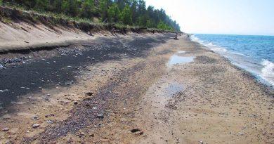 sable noir le long d'une plage