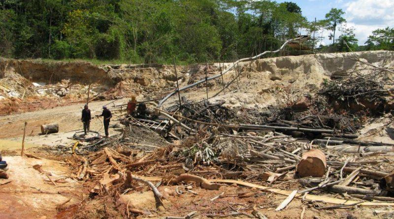 L'orpaillage en Guyane - L'or vert en danger 1