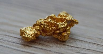pépite d'or trouvé en Alaska en 2013