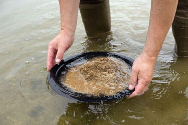 un orpailleur polonais nettoie l'or avec sa batée
