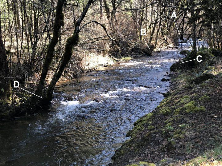 rivière prospecter sur 4 points de test