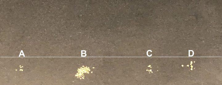 résultat de prospection sur 4 zones