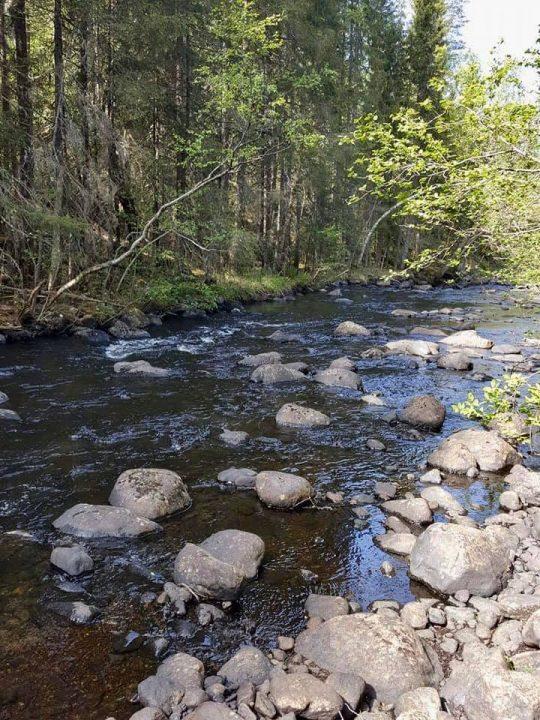 cours d'eau avec rochers à prospecter