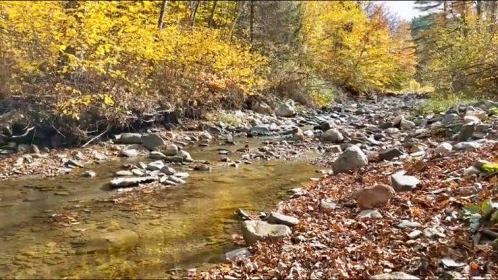 rivière aurifère d'Ardèche en plein automne