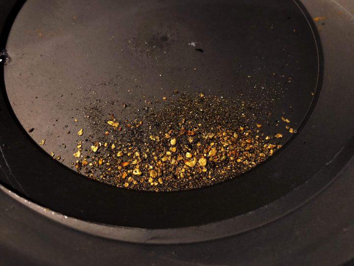 le chercheur d'or est un prospecteur qui cherche des pépites