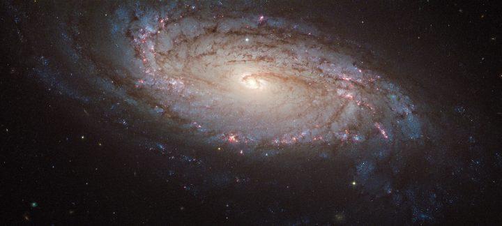 supernova dans l'univers génératrice de l'or